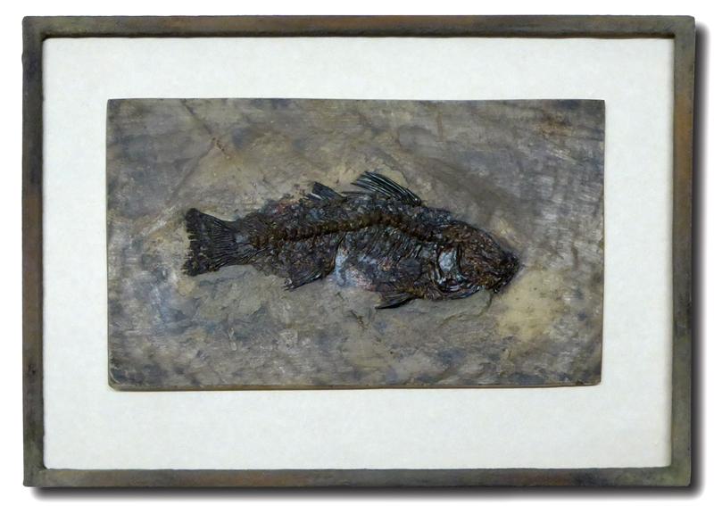 Steinpatinarahmen  mit Fisch